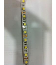 5050 LED 60